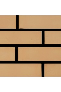 Кирпич Железногорский керамический солома 1НФ (одинарный) лицевой