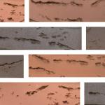 Кирпич Брянский Строма керамический Флеш Бордо, кора дуба, 1НФ, облицовочный
